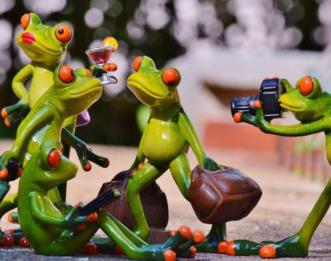 associazione-frog